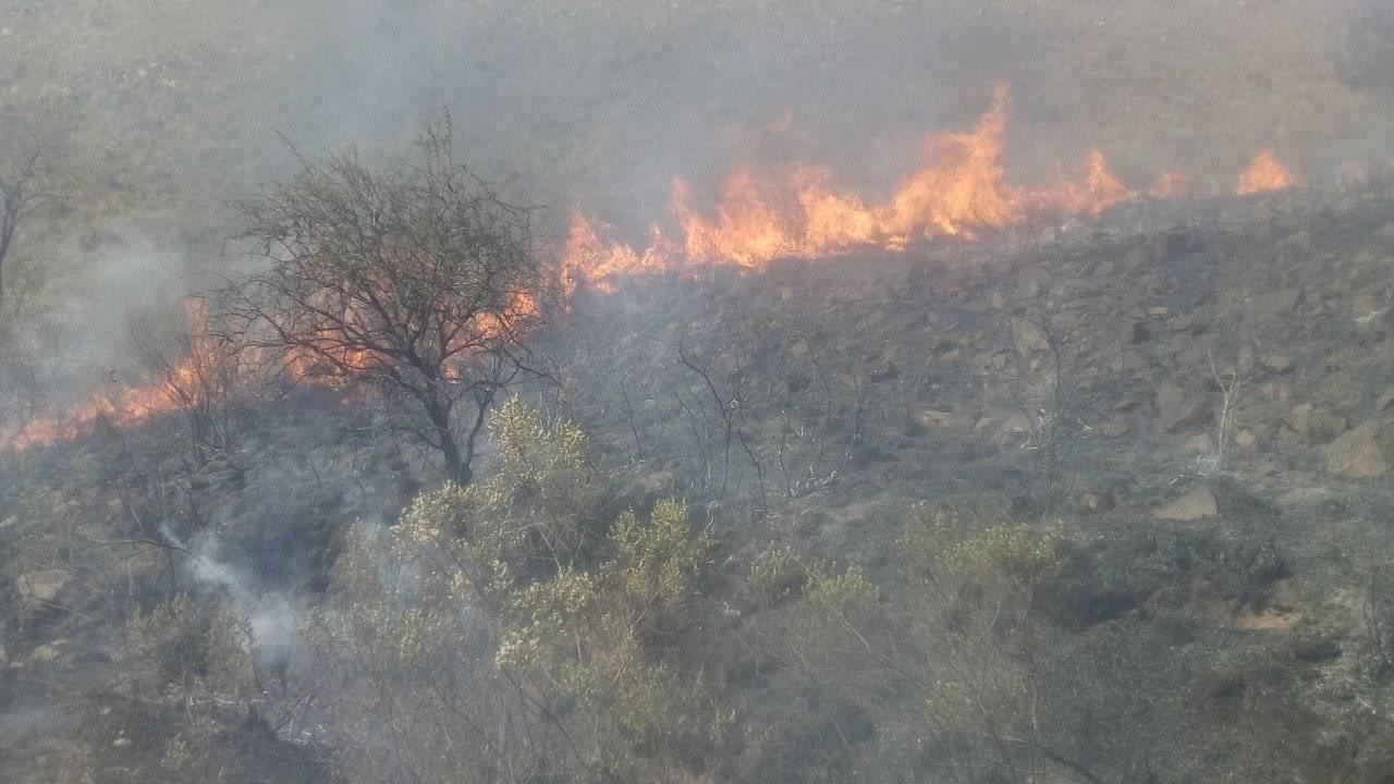 bomberos-saltenos-sofocaron-voraz-incendio-forestal-norte-ciudad-141525-112921